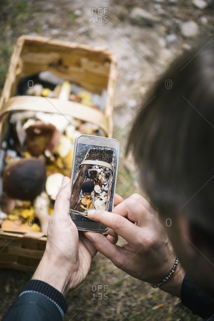 Man photographing basket of mushrooms