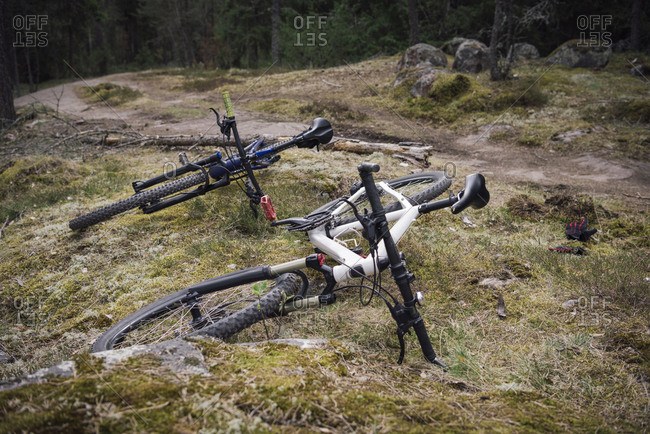 Two bicycles on grass