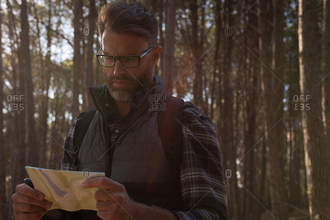 Man looking at map in forest on a sunny day