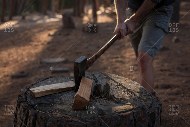 Mid section of lumberjack cutting firewood logs with axe in forest