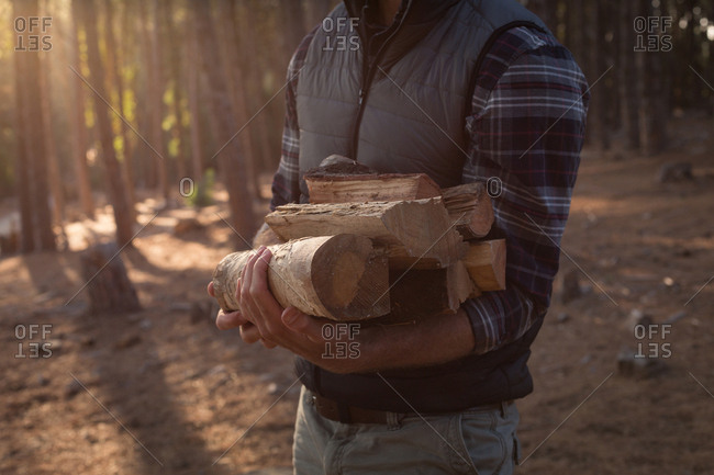 Mid section of man holding logs in the forest