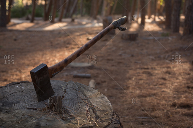 Close-up of an axe being thrust into a stump