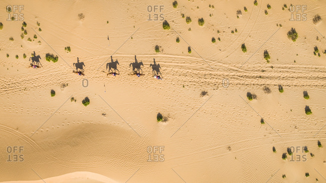 Aerial view of people riding camels in the desert of Al Khatim in Abu Dhabi, U.A.E.