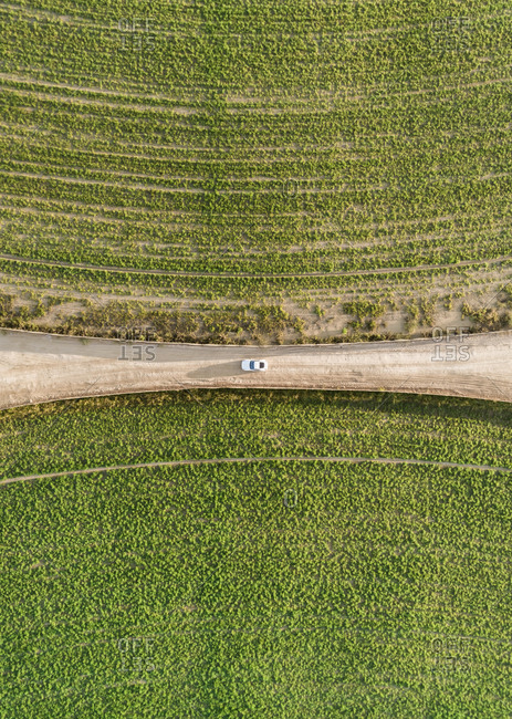 Aerial view of a car driving in between two agricultural circles in the middle of the Saih Al Salam Desert in Dubai, U.A.E.