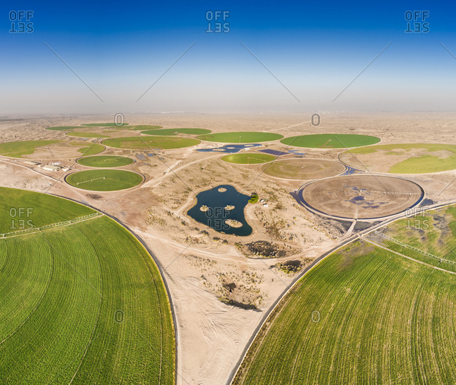 Aerial view of agricultural green circles in the middle of Saih Al Salam Desert in Dubai, U.A.E.