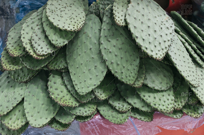 Cacti leaves stacked on plastic sheet at marketplace booth