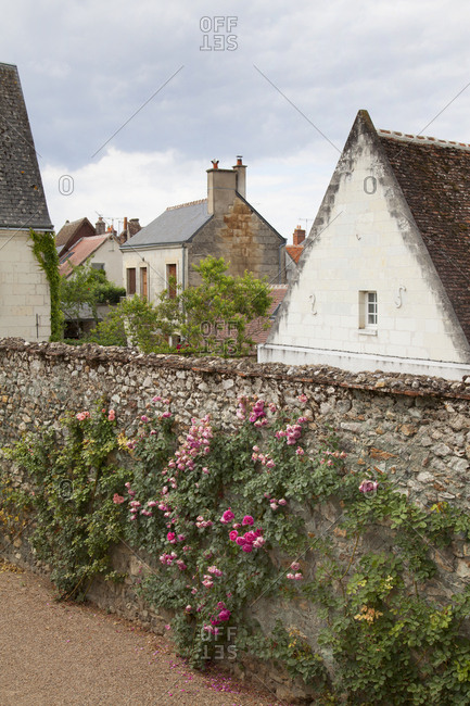 Peeking over stone wall covered in flowers in idyllic village in Loire Valley, France