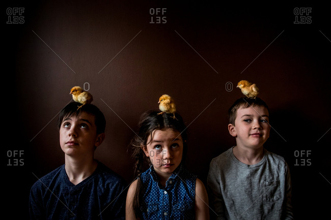 Three siblings lined up against the wall with pet chicks on heads