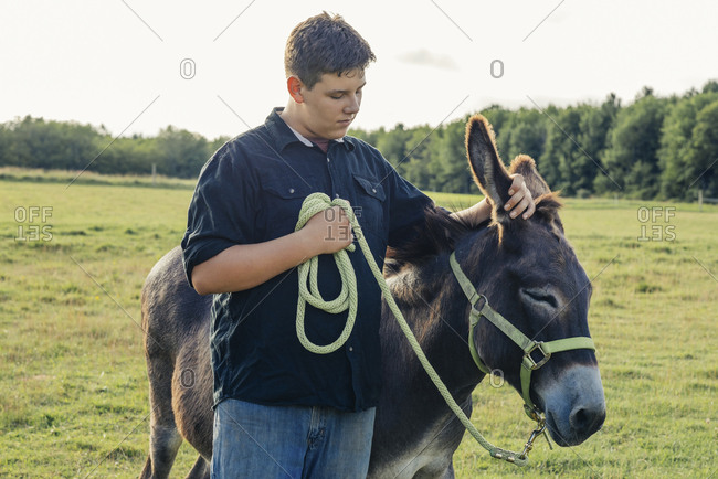 Teenage boy standing with donkey on farm