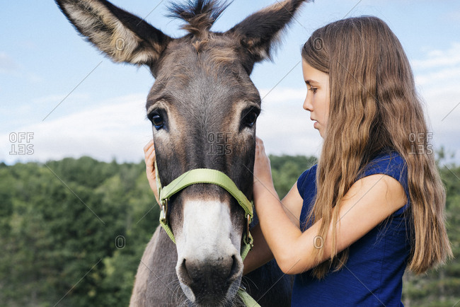 Young girl petting a donkey at farm