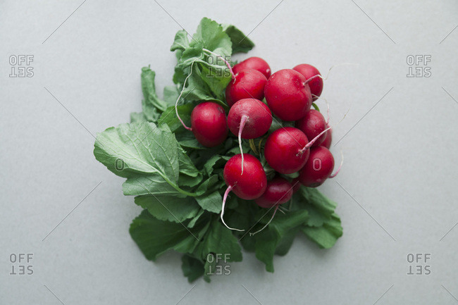 Heap of fresh radishes with tops and leaves on wooden rustic background