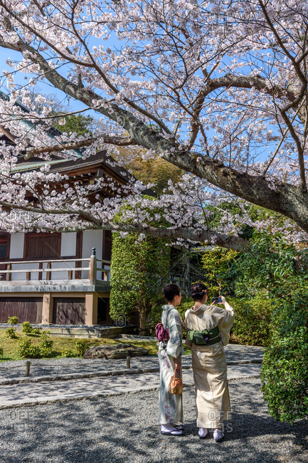 Two women in traditional Japanese robes taking photo of garden