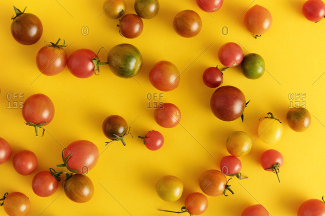 Top view of scattered array of tomatoes