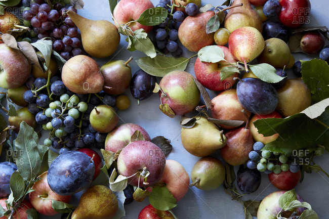 Pile of fresh fall fruits dispersed on table