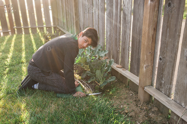 Brunette male teen gardener looking at camera with knife in his hand