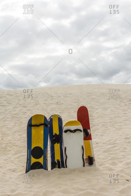 Sand boards in Joaquina dunes, Florianopolis, Santa Catarina, Brazil