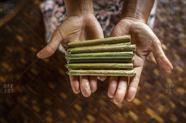 Hands of woman holding pile of cheroot cigars, Shan State, Myanmar