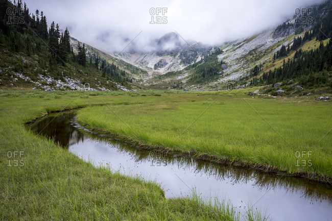 A small creek flows through Brandywine Meadows. This is a popular area for snowmobiling in the winter, but in the summer is beautiful alpine meadow. Whistler, British Columbia, Canada