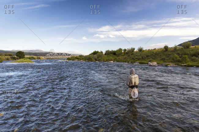 July 18, 2015: Rear view of man fishing knee deep in Madison River, Montana, USA