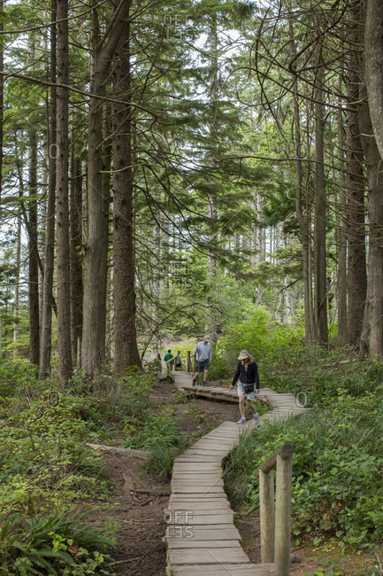 August 27, 2015: Visitors walking on a wooden boardwalk winding through the forest near Cape Flattery, Washington.