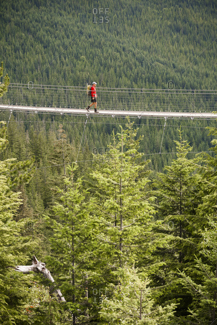 Mid distance view of hiker with backpack crossing footbridge amidst forest