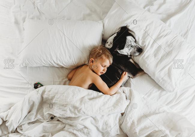 Little boy sleeping cuddling pet dog in bed