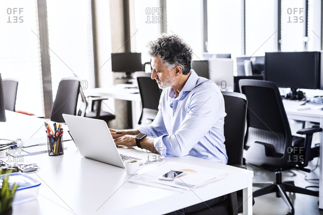 Mature businessman working at desk in office