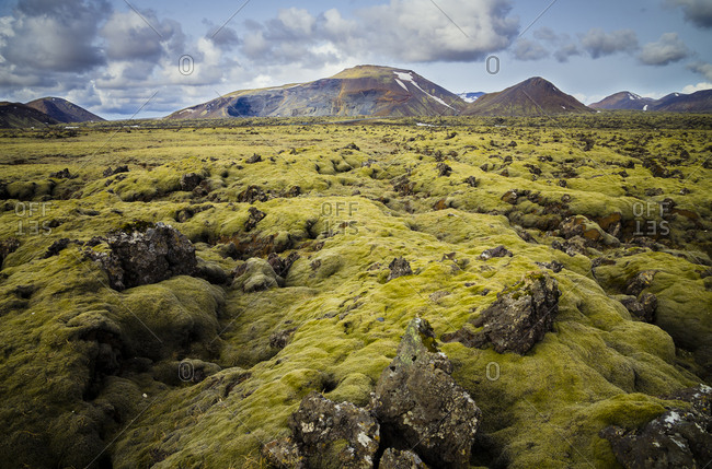 Iceland- South of Iceland- moss-grown volcanic rock