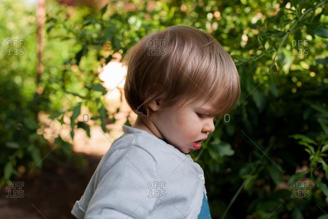 Baby girl exploring backyard in spring sunshine