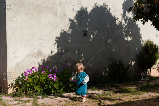 Little girl stepping off path to explore garden in spring sunshine