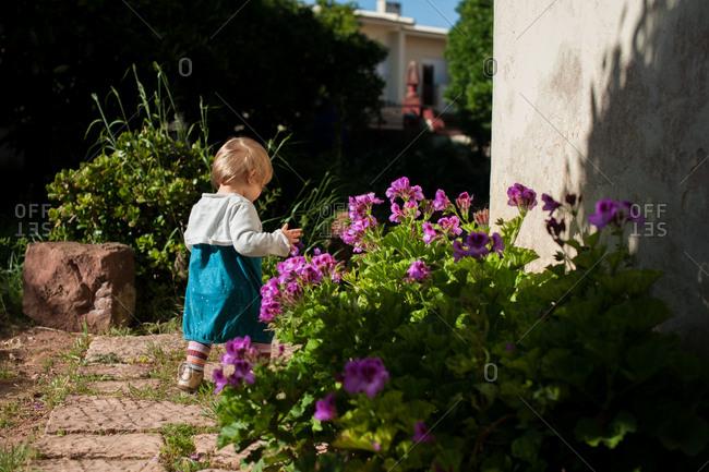 Rearview of little girl walking past flowers in backyard