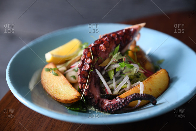 Octopus arm served in seafood salad