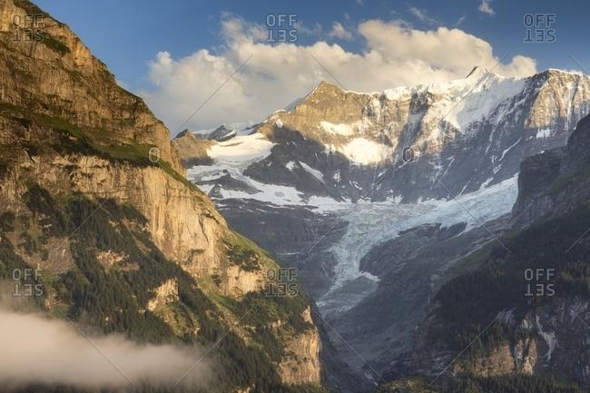 Sunset on Fiescherhorn mountain from Grindelwald village, Berner Oberland, Switzerland, Europe