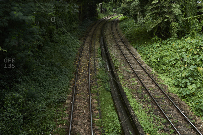 Railway surrounded of vegetation in the jungle. Yangon, Myanmar.