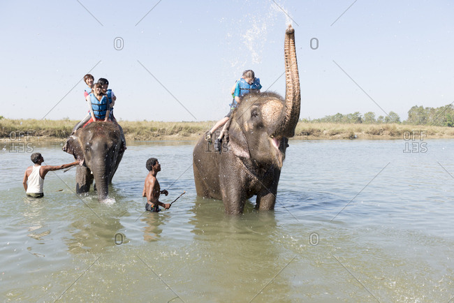 Nepal - June 7, 2012: Tourists being sprayed by elephants, Chitwan National Park, Nepal