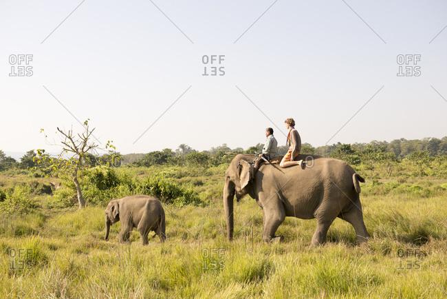 Nepal - June 9, 2012: Tourist riding elephants, Chitwan National Park, Nepal