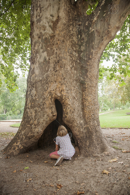 Boy playing in hollowed out tree in park