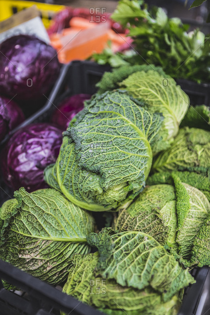 Cabbages for sale in crate at market stall