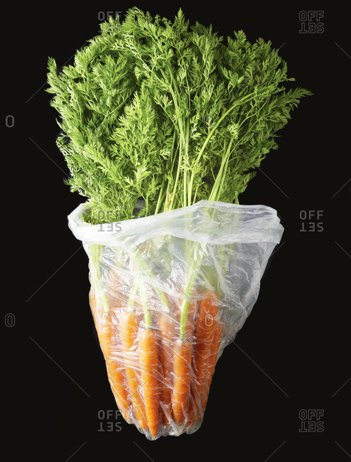 Studio shot of fresh carrots in a transparent plastic bag