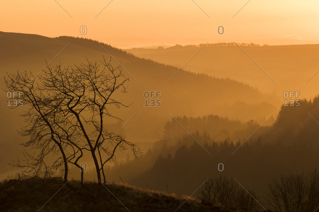 Morning view from the Borders, Scotland, United Kingdom, Europe