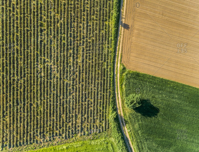 Ariel view of agricultural fields at beautiful Karditsa region in Greece
