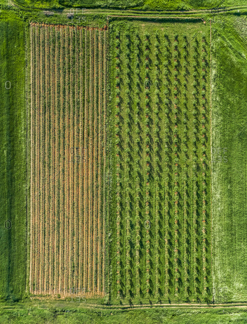 Aerial view of agricultural fields at beautiful Karditsa region in Greece