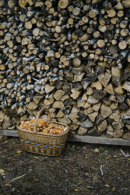 Basket filled with mushroom in front of stacked firewood
