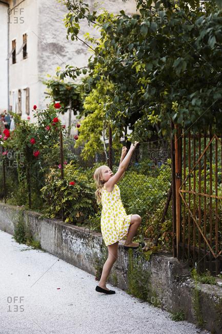 Girl climbing on fence