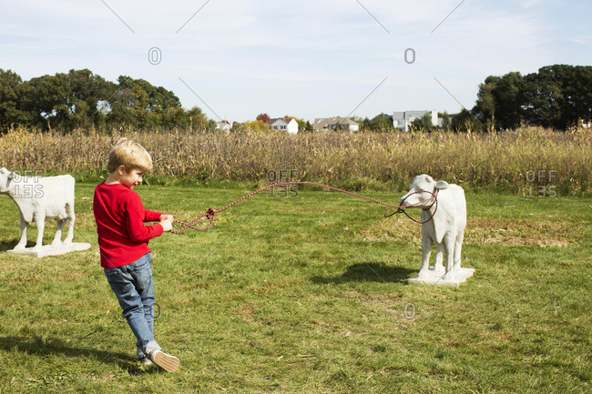 Young boy roping a calf statue at a outdoor, fall fair
