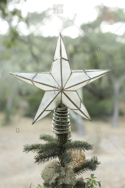 Christmas tree with star tree topper