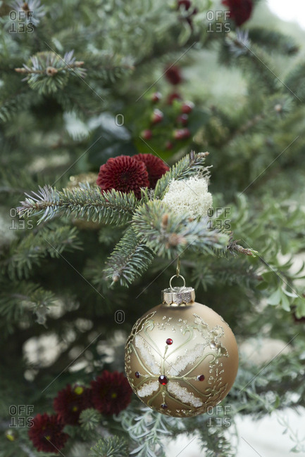 Decorative ball ornament hanging on branch of Christmas tree