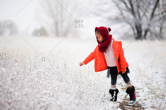 Little girl touching snow covered plants in a field