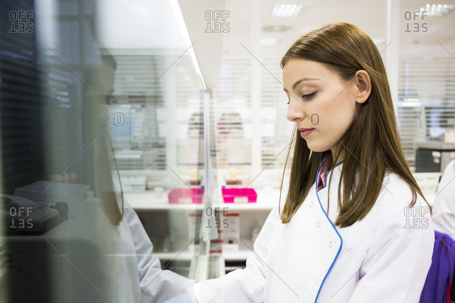 Young female scientist working with material behind safety screen in laboratory