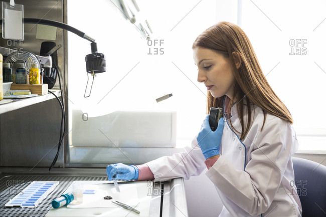 Young female scientist examining samples and recording results with voice recorder while working in an innovative laboratory